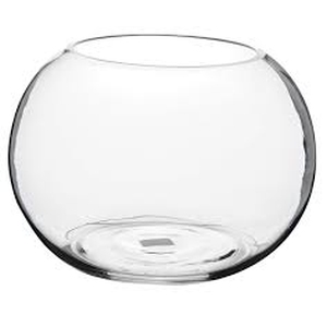 Vases Fish Bowl